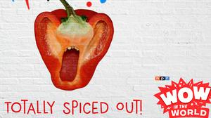 Cover art for Totally Spiced Out! (encore)