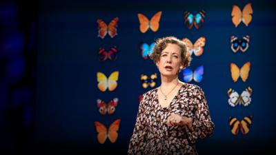 Cover art for How you can help save the monarch butterfly -- and the planet   Mary Ellen Hannibal